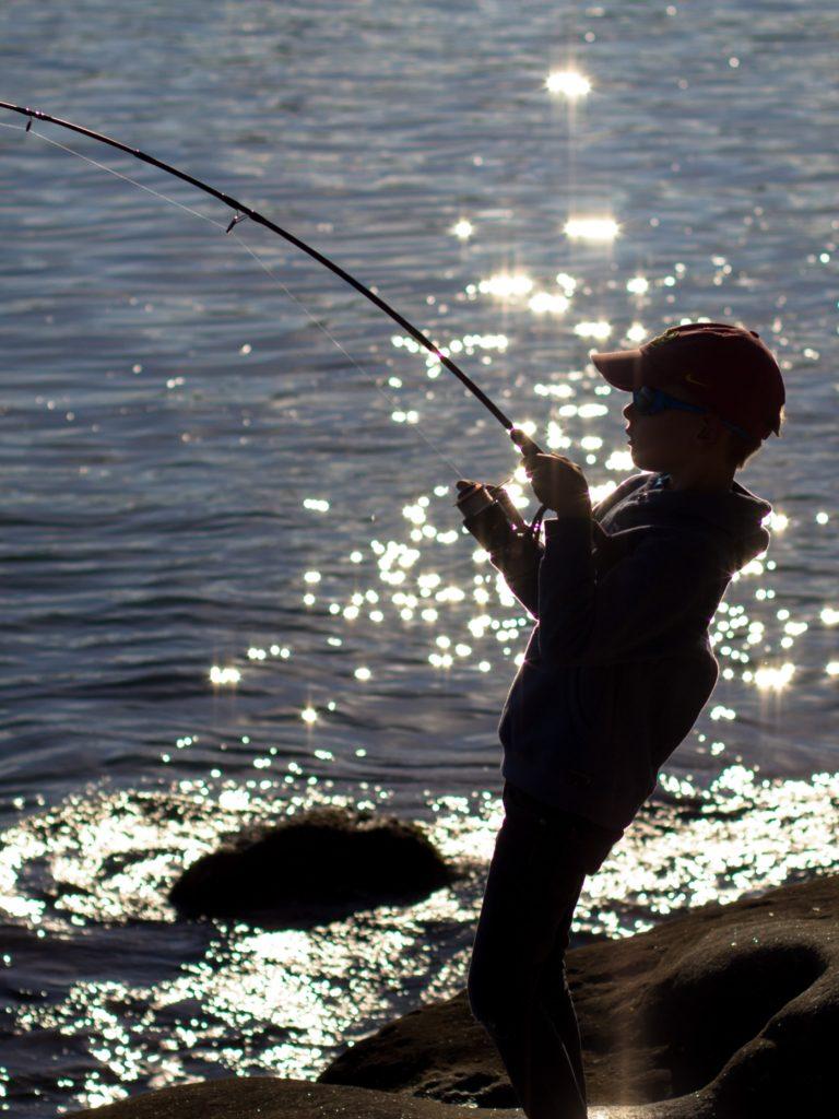 釣り道具買取